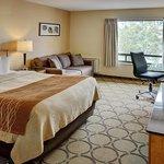 Comfort Inn - Highway 401