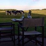 Cena con veduta della campagna !
