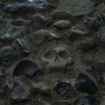 skeleton in wall inside Abbeygate
