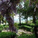 Giardino Casa Fiorita