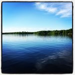 View from the lodge of the Chippewa Flowage