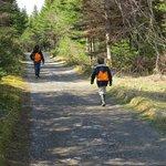 Hiking on Woody Island