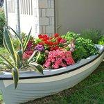 Flower Filled Boat
