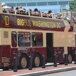 Avoid this bus