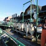 Big Bear Fishing Charter Catch