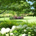 La Fiorida Farm & Beauty Foto