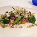 Barley/beet salad