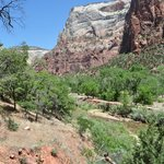 Hike in Zion Canyon.