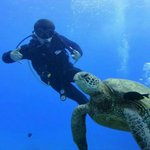 Scuba diving next to a sea turtle.