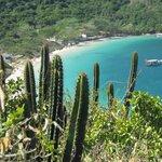 Vista da Praia do Forno a partir da trilha.