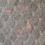 Paint on carpet of room 207 (Jacuzzi Room)