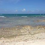 No beach......beautiful but reefy