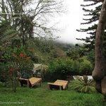 La vista desde el Jardín / Zona de Camping