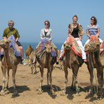 Camel ride by the beach