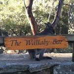 THE WALLABY BAR...