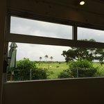 レストランの窓からの眺め