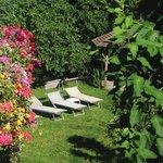 Nachmittagssonne im Garten