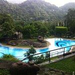 Pool-side view