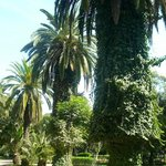Rabat Ville, Jardines de Nouzhat Hassan (Triangle de Vue)