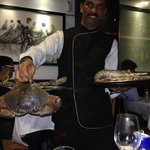Live Crabs for display !!! Select one and then have tandoori crab