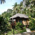 Tropic houses..very nice