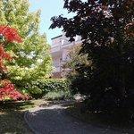 blühende Gartenanlage vor dem Haus