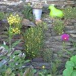 Jardin mur de pierre.