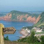 View of Sidmouth Nearby
