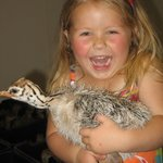 Kids love the baby chicks !!