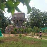 Tree House : Innovative Idea