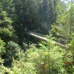 Suspension bridge to Falls