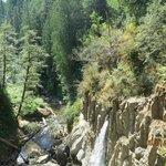 Drift Creek Falls view from suspension bridge
