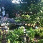 Pond behind the inn