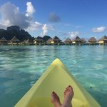 The Overwater Bungalows