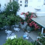 garden where we had breakfast