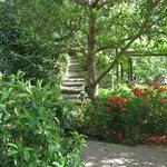 Rothschild Garden