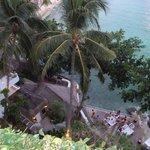 Nami View 2
