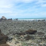 que des coraux morts à 5 min a pied de la plage de l'hôtel sur la gauche