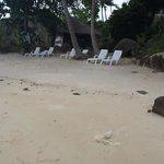 petite plage avec transats de l'hôtel et encore des déchets
