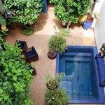 cour d'accueil , petit bassin