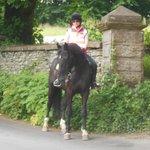 Bigland Hall Equestrian.