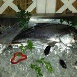 In alto il pesce spatola (o sciabola) per degli ottimi rotolini con cicorielle selvatiche ai pro