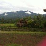 View from Resort- Vplcano