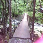 Bridge to the trail of the Hidden Waterfalls