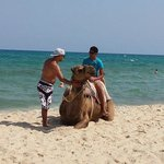 Beach/ Camel Rides Available
