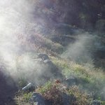 steam rising from hot spring coming out of ground!