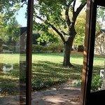 Backyard Entrance from Living Room