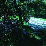 Photo de Nine Trees Inn