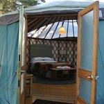 Yurt 16