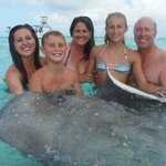 Sting Ray City 2014